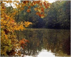 autumn river in MA