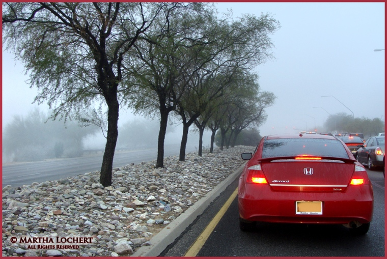 Foggy commute in Tucson, Arizona, as photographed by Martha Lochert.