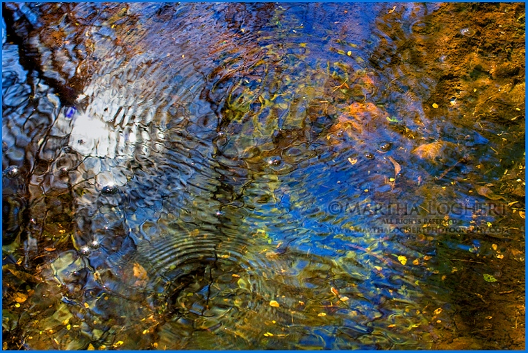 water reflections as photographed by Tucson photographer Martha Lochert