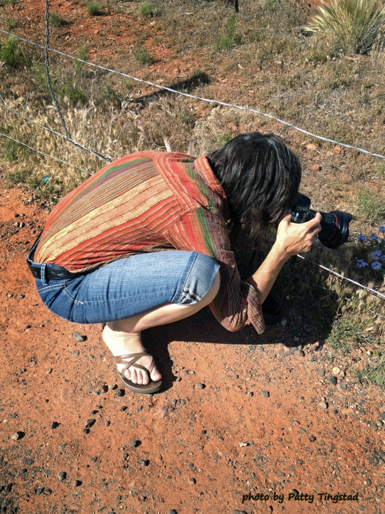 Photo of Tucson photographer Martha Lochert in action.