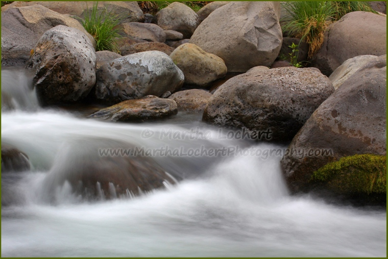 Oak Creek photographed by Tucson photographer Martha Lochert.
