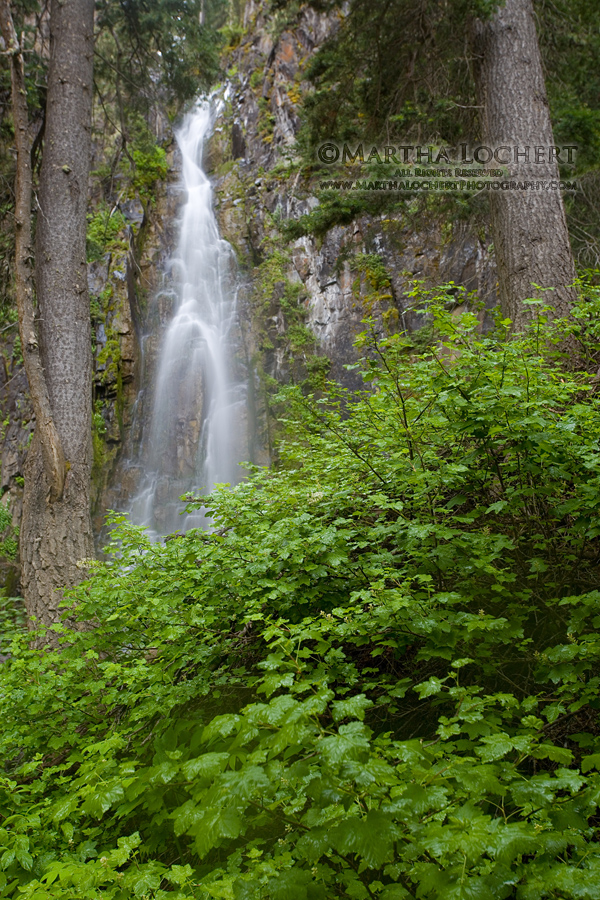 WaterfallMiddleForkCimarron5298