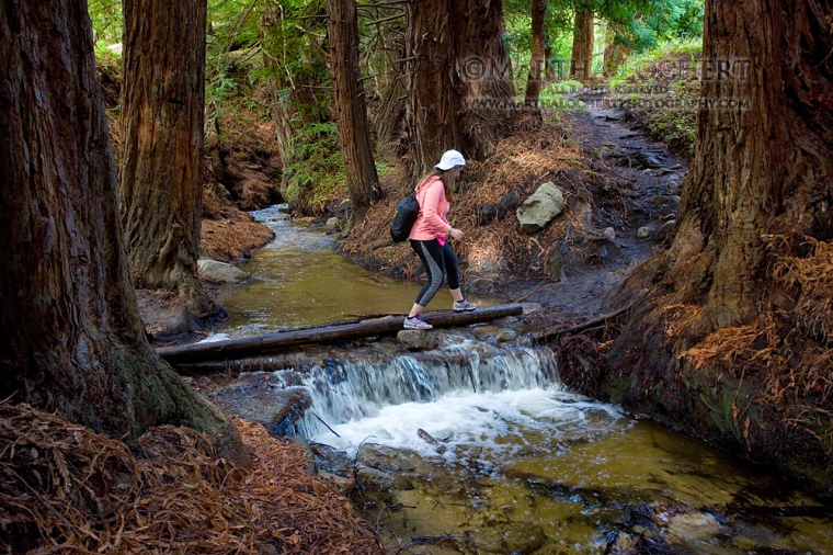 Photo by Tucson photographer Martha Lochert of a hiker crossing Soberanes Creek on the Soberanes Creek Trail in Garrapata State Park, CA.